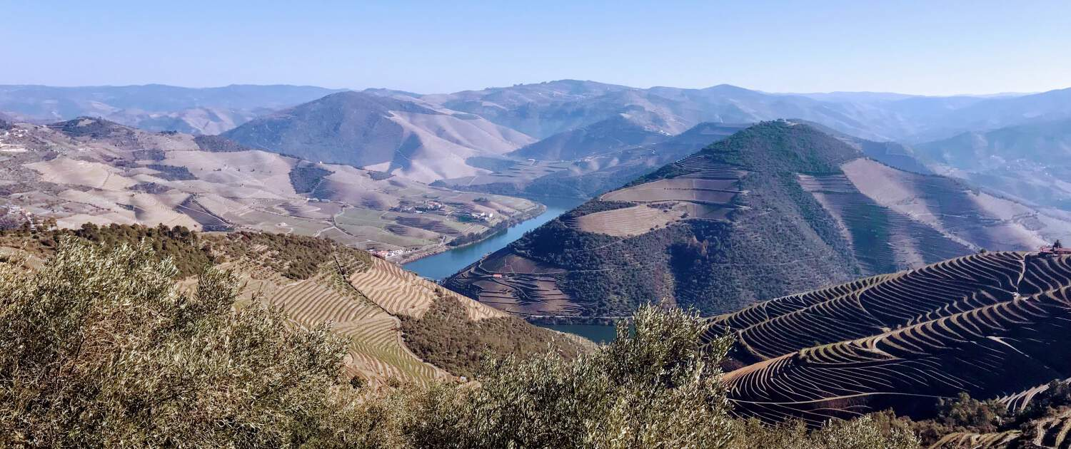 Unmissable Tours in the Douro Region