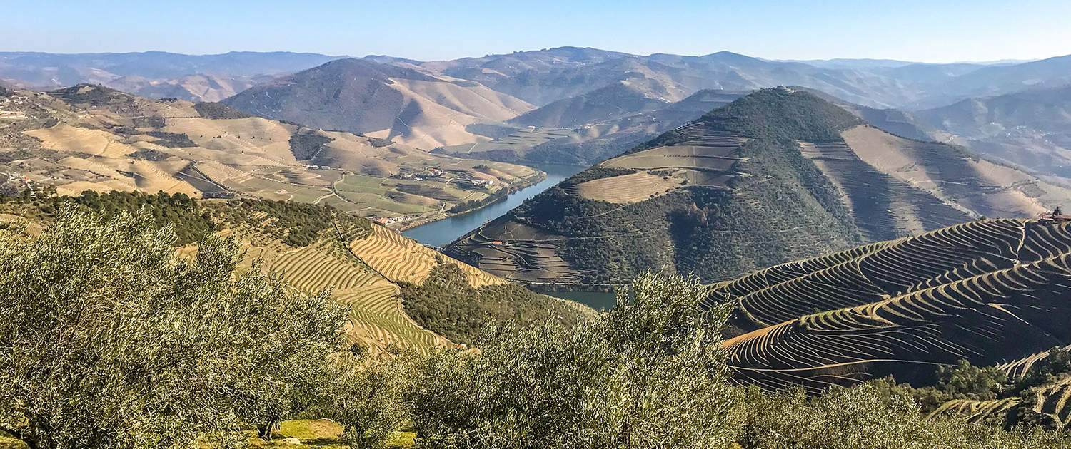 Douro Vineyards Hike