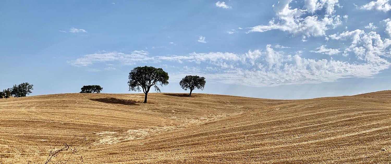 Rota Vicentina Historical Way Alentejo - Portugal Nature Trails